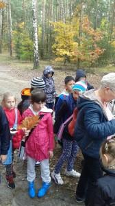 Szukanie skarbów lasu
